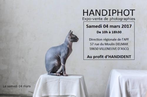 HANDIPHOT.jpg